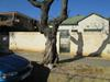 Property For Sale in Kenilworth, Johannesburg